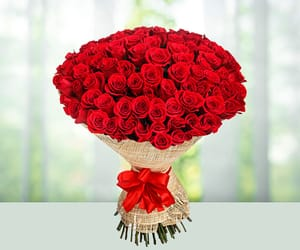 flowers, gifts, and christmasgifts image