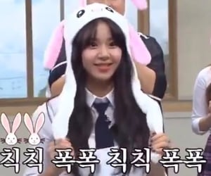 k-pop, rabbit, and twice image