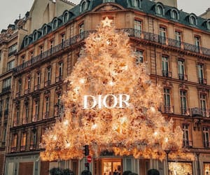 dior, christmas, and winter image