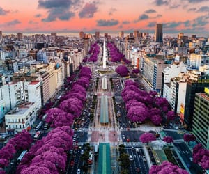 argentina, buenos aires, and sunset image