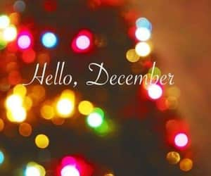 winter, december, and hello december image