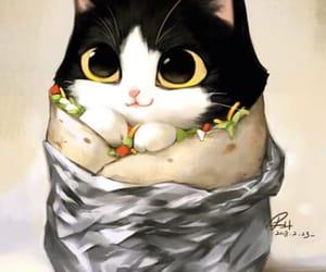 art, burrito, and cat image