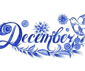 cold, rain, and hello december image