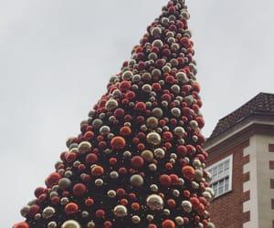 christmas, christmas light, and christmas tree image