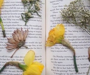 book, indie, and plants image