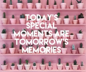 cactus, text, and memories image