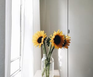 flowers, house, and sunflower image