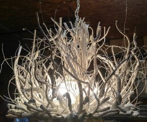 chandeliers, etsy, and twig chandelier image