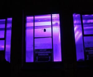 purple, neon, and architecture image