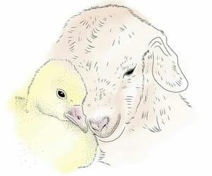 animal liberation, veganism, and amor y paz image