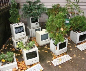 plants, computer, and aesthetic image