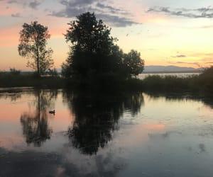 aesthetics, nature, and reflection image