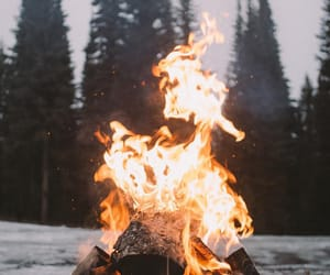 fire and nature image