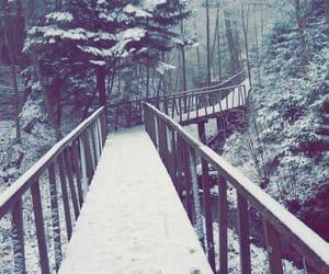 beutiful, bridge, and christmas image