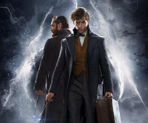 dumbledore, fiction, and newt image