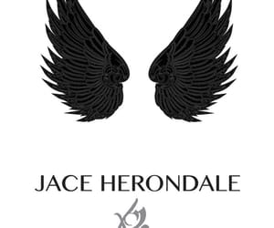 angel, wings, and city of bones image