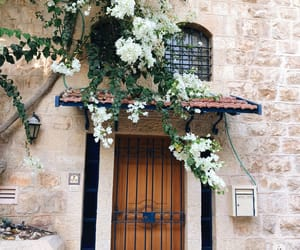 flowers, jewish, and old city image