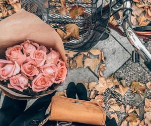 fall fashion, red rose, and pink roses image