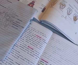 biology, handwriting, and heart image