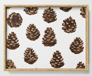 decor, gifts, and pinecones image