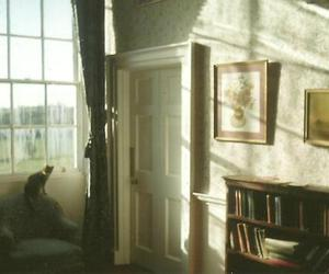 cat, room, and vintage image