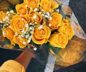 alternative, girls, and roses image
