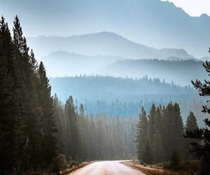 nature, road, and Road Trip image