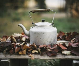 autumn, fall, and kettle image