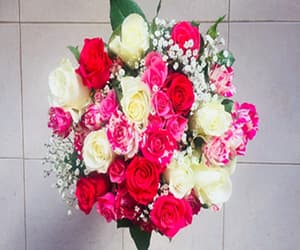 send gifts to pakistan, eid gifts online, and pakistan gift courier image