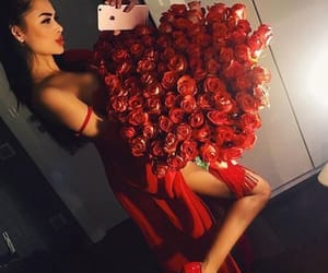 red, flowers, and rose image