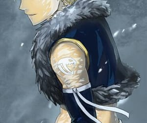 fairy tail and sting image
