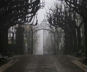 black and white, dark, and gate image
