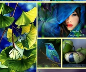 Image by Kiki Sharon