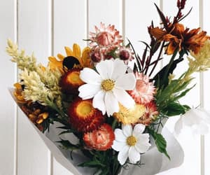 flowers, bouquet, and nature image