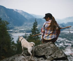 adventure, cool, and dog image