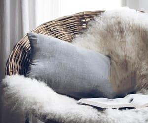 chair, december, and fur image