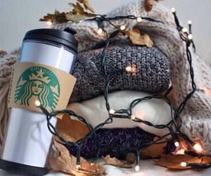starbucks, light, and winter image
