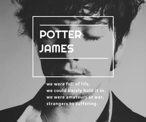 aaron johnson, harry potter, and prongs image