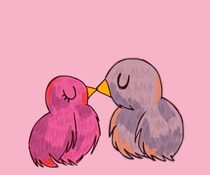 animation, birds, and kiss image