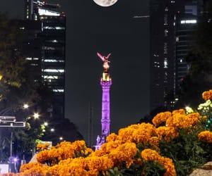 dia de muertos, ciudad de mexico, and cdmx image