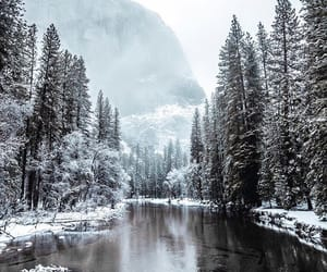 winter, nature, and instagram image