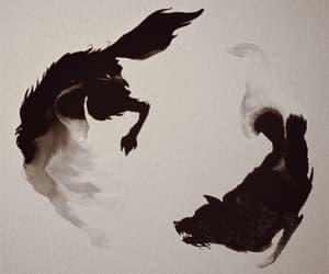 aggressive, black, and magic image