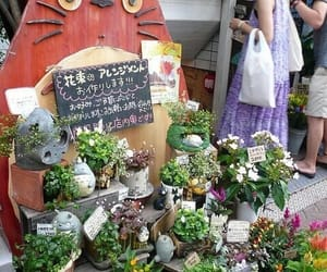 plants, totoro, and japan image