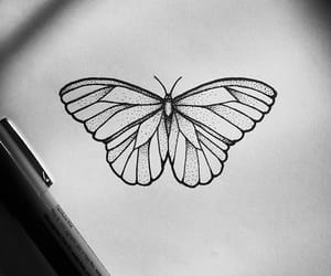 beautiful, butterfly, and cool image