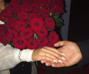 couple, roses, and Relationship image