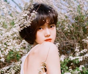 flowers, kpop, and model image
