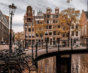 amsterdam, bridge, and netherlands image
