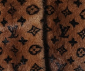 clothes, Louis Vuitton, and luxury image