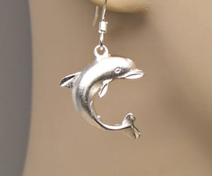 beach, dolphin, and silver image