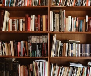 books, library, and bookwarm image